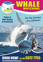 Spirit of GC Whale Watching A4